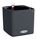 Novelty Mfg Plant Containers & Accessories