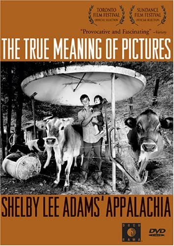 True Meaning of Pictures [DVD] [Import]