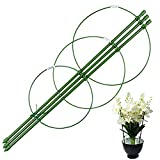 pinnacleT1 Climbing Plants Support- Garden Plant Support Ring,Circular Garden Trellis for Flowers Tomato Cages Stand,Set of 3 Pack