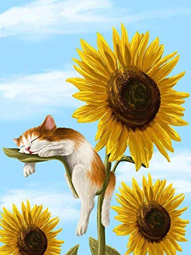 Kit Sunflower (5D Full Drill Diamond Painting Kit, DIY Diamond Rhinestone Painting Kits for Adults and Children Embroidery Arts Craft Home Decor 12 x 16 inch (Sunflower&Cat))
