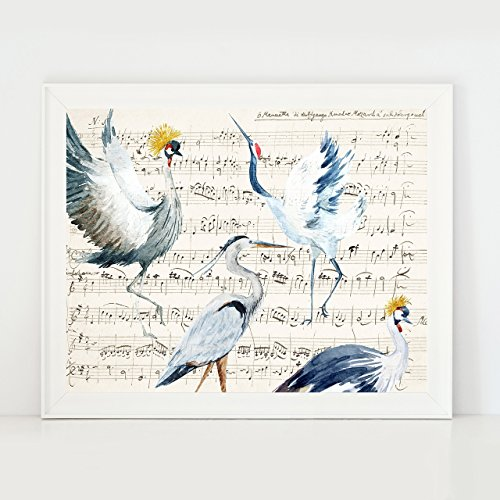 Mozart Music Sheet With Birds Wall Art Kitchen Decor Giclee Print (Art Bird Prints)