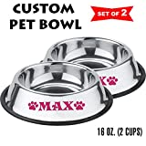 Jeyfel Decals: Personalized Stainless Steel Pet Bowl Set. Dog, Cat. 16 OZ. (2 Cups) (Pink) For Sale