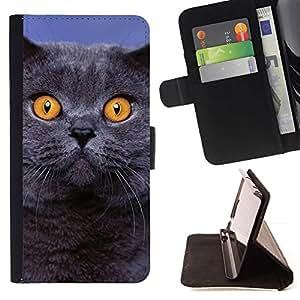 Momo Phone Case / Flip Funda de Cuero Case Cover - Siberiano azul British Shorthair gato; - Sony Xperia M2