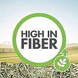 Vitakraft Timothy Hay - Premium Sweet Grass Hay
