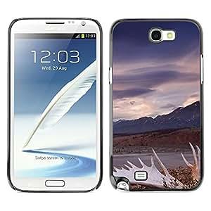 For Samsung Note 2 N7100 , S-type Vintage - Arte & diseño plástico duro Fundas Cover Cubre Hard Case Cover