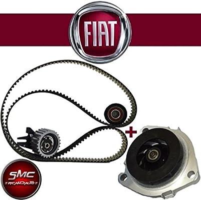 Kit distribución Fiat Bomba Agua Graf Alfa Romeo 147 1.9 JTD 16 V 103 kW: Amazon.es: Coche y moto