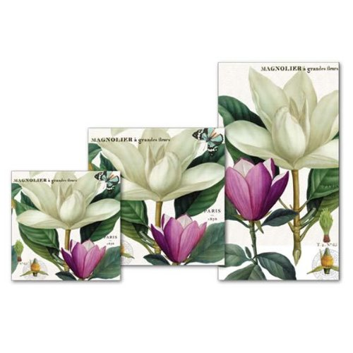 Michel Design Works Magnolia Hostess Napkin, Package of 16, 3-Ply by Michel Design Works (Image #1)