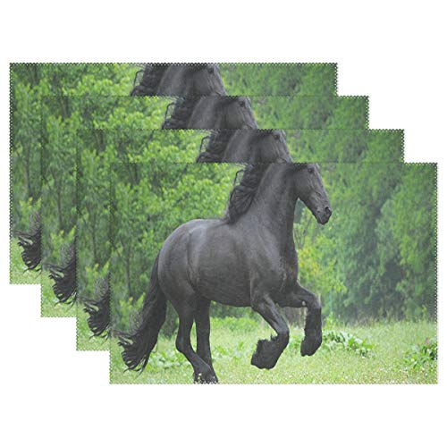 DERTYV Heat Resistant Placemats for Kitchen Table Mats for Dinning Room,Horsepower Friesian Horses Black Washable Insulation Non Slip Placemat 12x18 inch 4 pcs