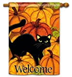 Pumpkin Patch Cat Halloween House Flag – Double Sided Review