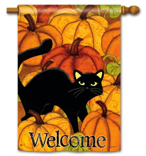 Pumpkin Patch Cat Halloween House Flag - Double -
