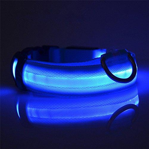 bluee M 15.6''-18.72'' bluee M 15.6''-18.72'' TKSTAR LED Collar for Dogs Waterproof LED Pet Collar USB Rechargeable Flashing in Dark 3 Mode Lighting Nylon Cat Collar Luminous Night Safety1PACK (M 15.6''-18.72'', bluee)