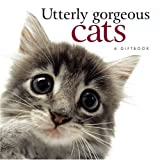 Utterly Gorgeous Cats, Pam Brown, 1846340942