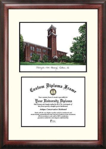 (Campus Images WA996V Washington State University Scholar Diploma Frame, 11