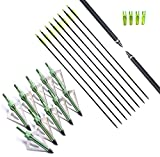 FlyArchery 10PK Archery 32-Inch Hunting Fiberglass Arrows With 10 Green 3 blades Broadheads 100 Grain For Compound Bow or Recurve