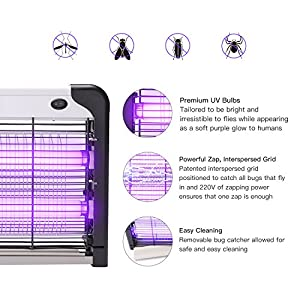 Commercial Electric Bug Zapper - Indoor & Covered Patio Insect Killer 2800V | Fruit Fly, Stink Bug, Ladybug, Moth, Wasp, Gnat and More | Electronic Trap Lamp | 1 Acre Coverage | Safe 40W Light Bulb