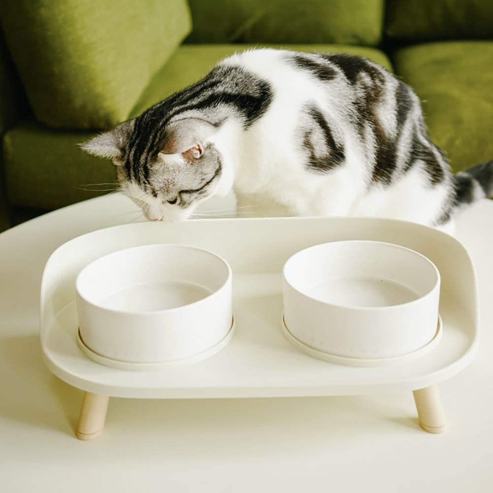 Elevated Cat Bowls, Double Food and Water Dog Raised Bowls with Stand, Ceramics Cat Dog Bowl with No-Spill Design, Feeder Bowls Dogs Cats and Pets, Anti Vomiting Pet Bowls (White)