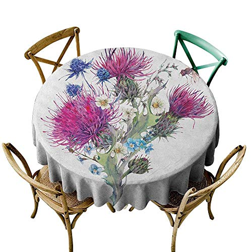 Wendell Joshua Banquet Tablecloth 70 inch Dragonfly,Summer Natural Meadow Herbs Bouquet Wild Thistles Chamomiles Watercolor Boho Art, Multicolor Great for Buffet Table, Parties, Holiday Dinner & ()