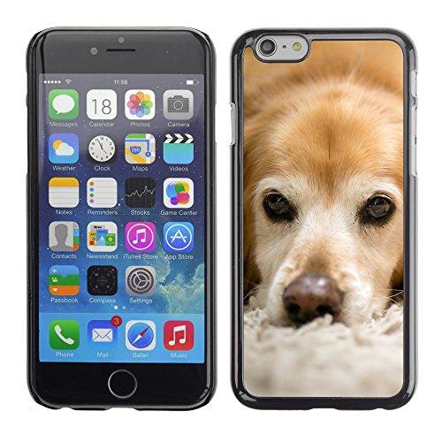 """Premio Sottile Slim Cassa Custodia Case Cover Shell // F00006231 Le petit chien // Apple iPhone 6 6S 6G 4.7"""""""