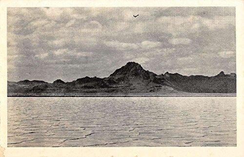 Utah Antique - 7