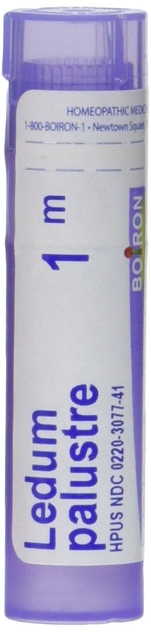 Boiron - Ledum palustre 1M 80 plts