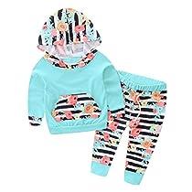 Gotd 2pc Newborn Baby Boy Girl Flower Hoodie Tops Stripe Pants (18 Months, Green)