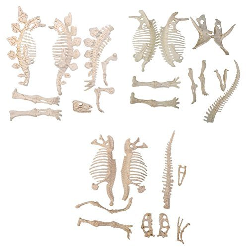 NUOLUX 3Pcs 4D Dinosaur Fossil Skeleton Toys DIY For Kids Fossil Skeleton (Dinosaur Skeleton Toys)