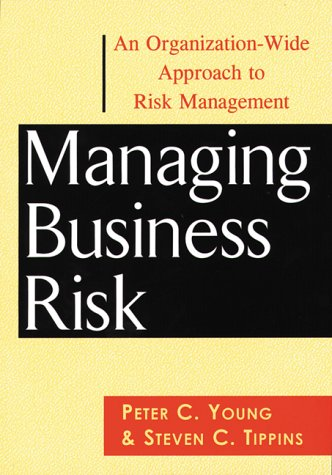Managing Business Risk: An Organization-Wide Approach to Risk Management Pdf