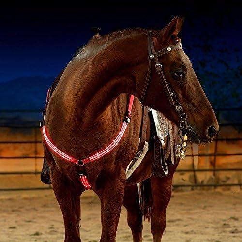 GCSEY Coraza del Caballo LED Dual Arnés De Nylon Noche Visible Hípica Compite con El Equipo Equitación Cheval Cinturón