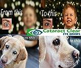 2 x 15ml (0.5 fl oz) Bottles of The Best Cataract