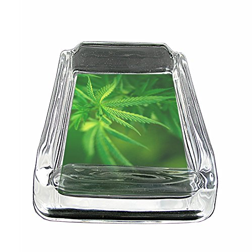 Vintage-Marijuana-Art-S1-Glass-Square-Ashtray-4x3-Sturdy-Cigarette-Smoking-420-Classic-Weed-Images