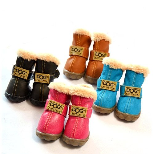 Ugg dogs for boots images