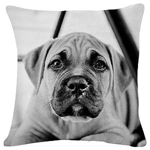 Amazon.com: Puppy Dog Face Eyes Ears Beautiful - Throw