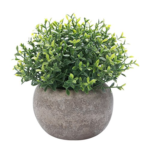 Decorative House Plants - HC STAR Artificial Plant Potted Mini Fake Plant Decorative Lifelike Flower Green Plants - 1203