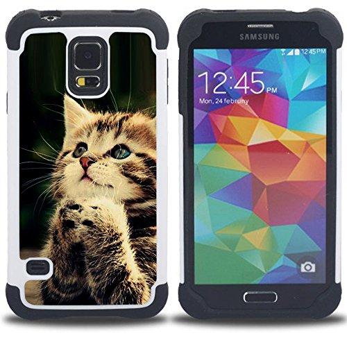 STPlus Gato en una caja Animal Doble Capa de Protección Rígido + Flexible Silicona Carcasa Funda Para Samsung Galaxy S5 #15