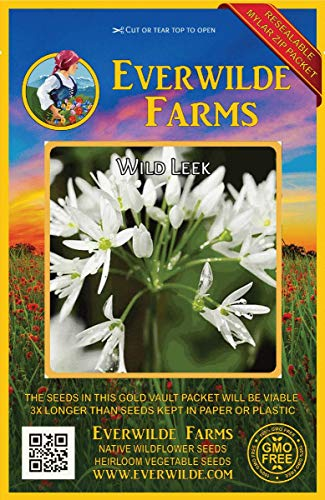 Everwilde Farms - 15 Wild Leek Native Wildflower Seeds - Gold Vault Jumbo Seed Packet