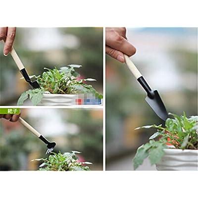 Hengsong Garden Bonsai Tools 3-Piece Wooden Handle Mini Metal Shovels Kid's Sand Beach Toys : Garden & Outdoor