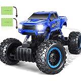 DOUBLE E 1:12 Remote Control Cars Crawler Truck 4WD