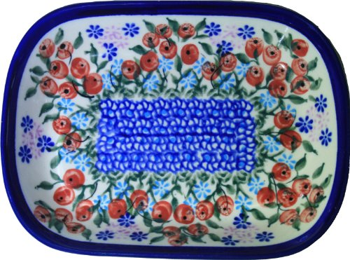 Daisy Platter (Polish Pottery Ceramika Boleslawiec 0726/282 Royal Blue Patterns Butter Platter, 6 by 4-1/2-Inch, Red Berries and Daisies)