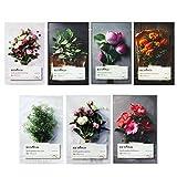 beyond Beyond Herb Garden Mask of 7 Types (Total 7pcs)