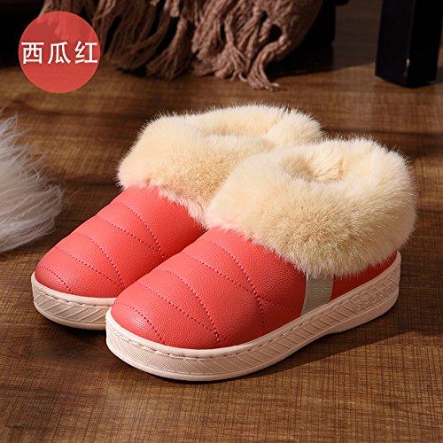 DogHaccd pantofole,Un paio di inverno home pantofole di cotone alta femmina-package con piscina coperta e scoperta anti-slittamento peluche spessa caldo cotone scarpe maschili,Il rosso35-36
