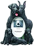 Black Great Dane  Gift Picture Frame Holds Your Favorite 3x5 Inch Photo, A Hand Painted Realistic Looking Black Great Dane  Family Surrounding Your Photo. This Beautifully Crafted Frame is A Unique Accent to Any Home or Office. The Black Great Dane  Picture Frame Is The Perfect Gift For Black Great Dane  Owners And Lovers!