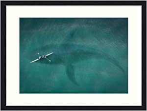 OiArt Wall Art Print Wood Framed Home Decor Picture Artwork(24x16 inch) - Boot from Above Top View Hai Great White Shark