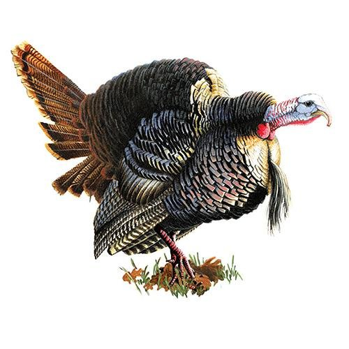 Rivers Edge Products Car Magnet Turkey