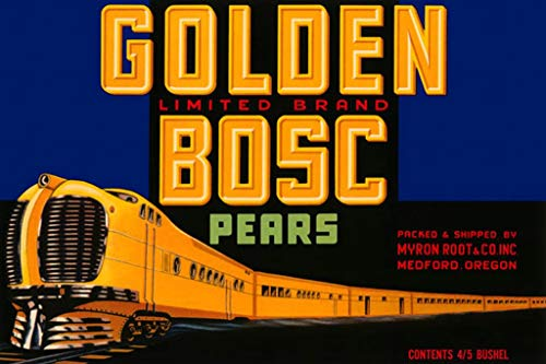 ArtParisienne Golden Bosc Pears Medford, Oregon No. 1 20x30-inch Canvas ()