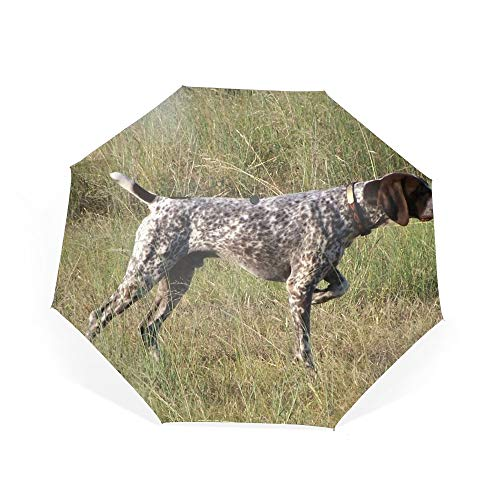 Travel Umbrella, Windproof Folding Umbrella, Auto Open Close and Ergonomic Handle (German Shorthaired Pointer) ()