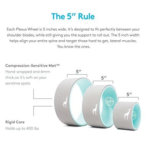 Plexus Wheel 3 Pack Back Stretch Roller Amp Back Wheel For