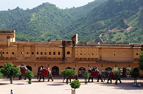 (Home Comforts Laminated Poster Elephants Amber Jaipur Fort Architecture Rajasthan Poster 24x16 Adhesive Decal)