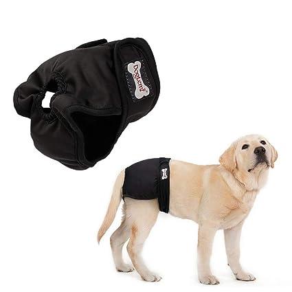 Kobwa pañales de alta absorción para perro, pantalones sanitarios para perro hembra, reutilizables,