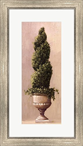 (Roman Topiary llI by Welby Framed Art Print Wall Picture, Silver Scoop Frame, 16 x 28 inches)