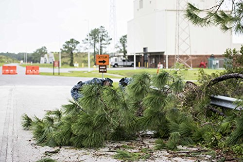 Home Comforts Laminated Poster Sailors Remove a Fallen Tree which is Blocking a Road on Naval Submarine Base Kings Bay (NSBKB) AFT Vivid Imagery Poster Print 24 x 36